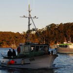 Aufbruch zum Kiwi-Spotting