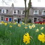 Die Stadt der Blüte - Aberdeen gewann schon sechs Mal den Blumen-Wettbewerb