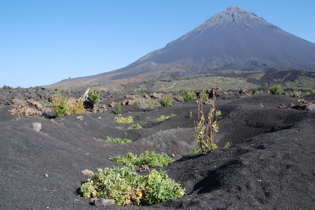 Fruchtbare Vulkanerde vor Pico