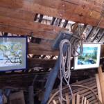 Kunstausstellungen einheimischer Maler in der Werft
