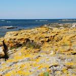 Ein Idyll: Die Ostseeküste