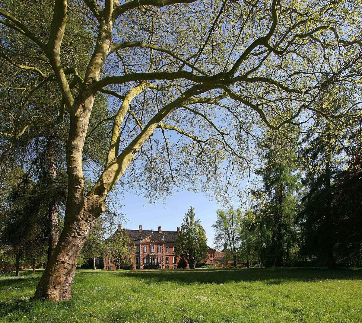 Mit einem Gartenfest öffnet am 23. Mai das Schlossmuseum; Foto: Dr. Carsten Neumann