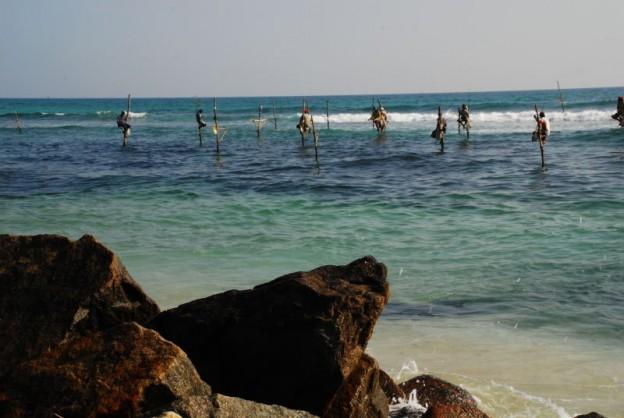 Stelzenfischer von Weligama